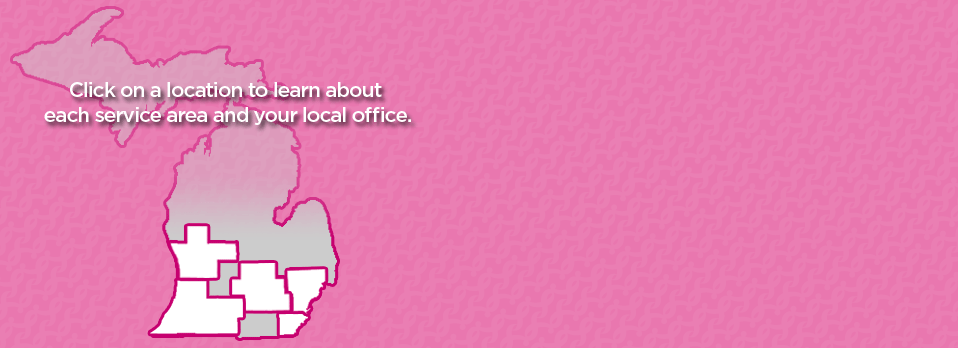 pink-Wordpress-Flash-Banner-Komen-Michigan-Template-2